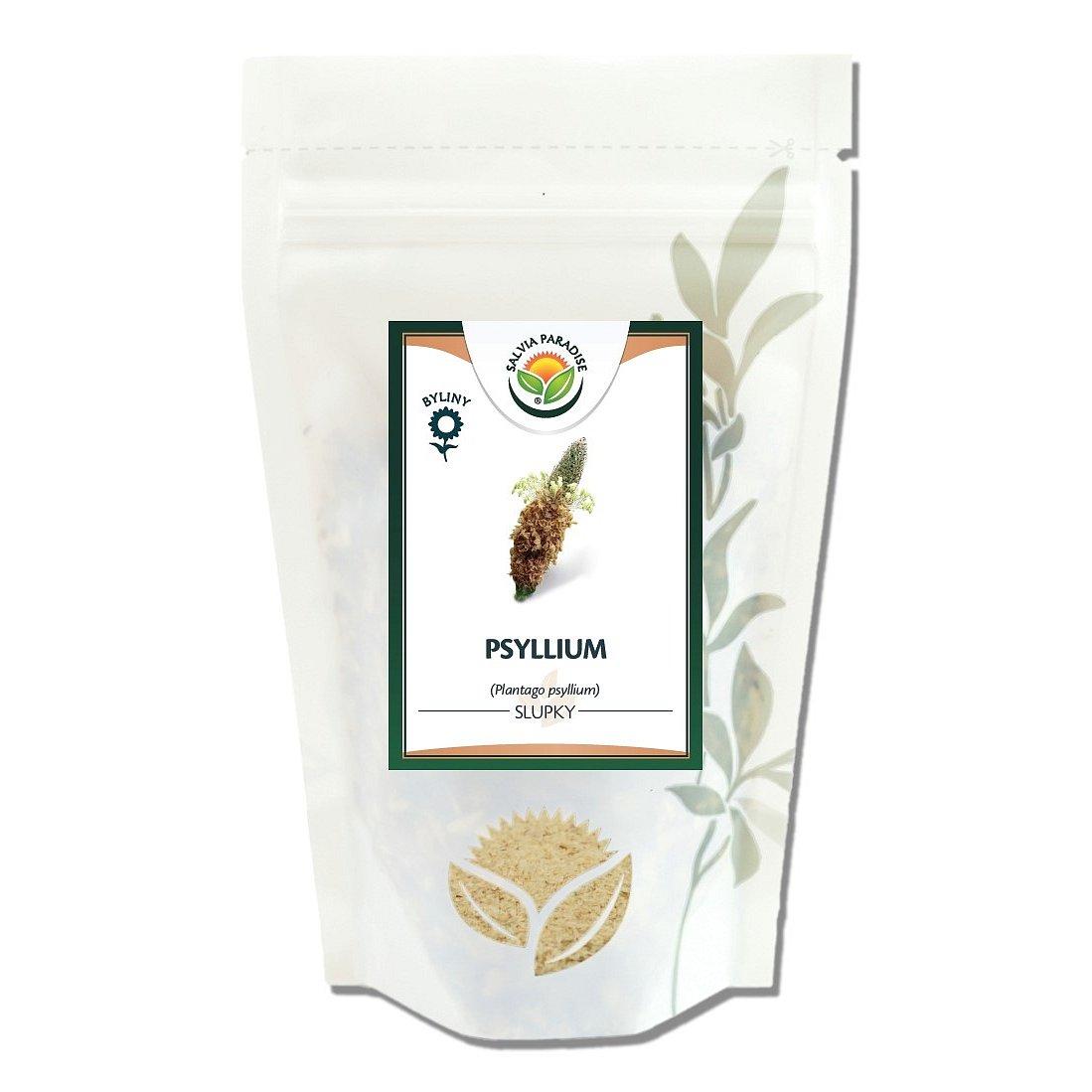Salvia Paradise Psyllium 100g