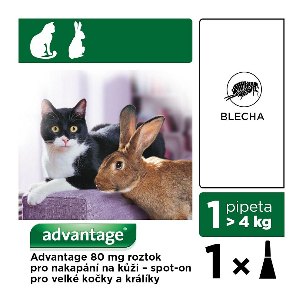 ADVANTAGE pro kočky a králíky nad 4kg