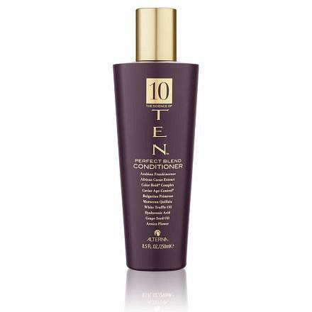 Alterna TEN Perfect Blend Conditioner - Kondicionér pro okamžité zvlhčení dehydratovaných vlasů 250 ml