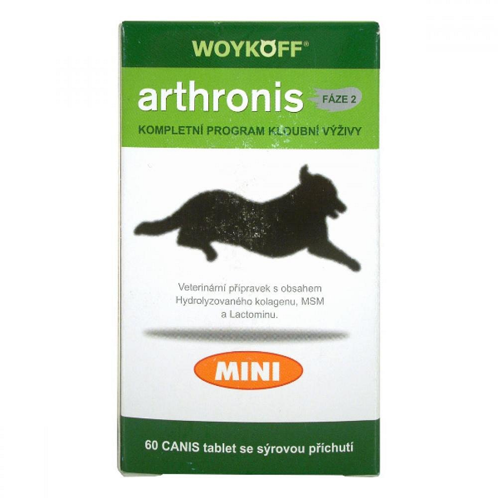 Arthronis Mini 2-60 tablet