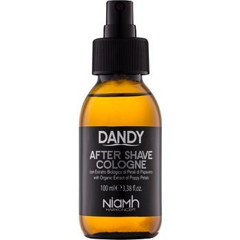 DANDY After Shave voda po holení  100 ml