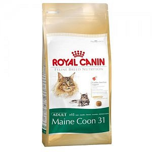 Royal Canin MAINE COON CAT (>15m) 10kg