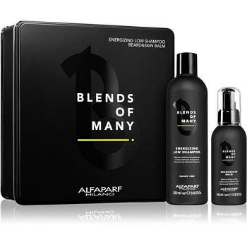 Alfaparf Milano Blends of Many kosmetická sada (pro muže)