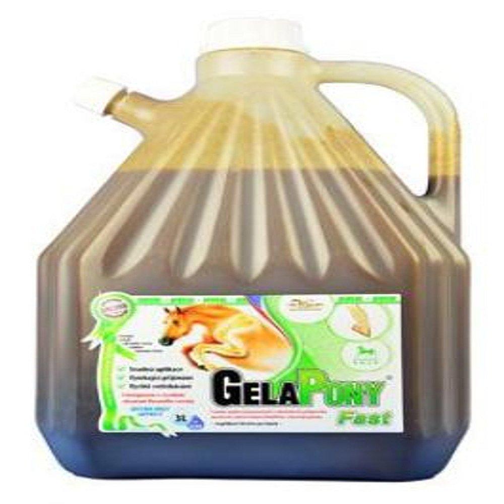 GELAPONY Fast Biosol 3000 ml