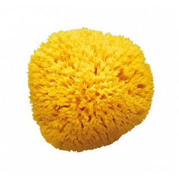 "Houba na mytí 12 ""Honeycomb"""
