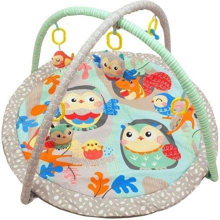 Hrací deka Baby Mix sovičky