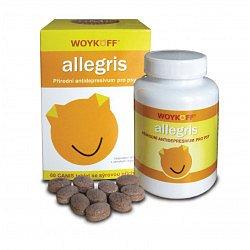 Woykoff Allegris sýrová příchuť 60 tablet